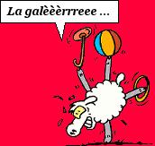 """Recette postée par """"lou loup"""" : recette agneau aux fruits secs 219414"""